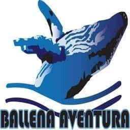 ballena-aventura-1