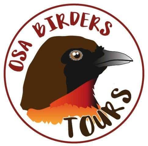 osa-birder