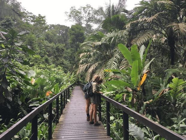 cahuita-nat-park